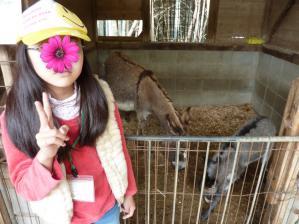 渋川動物公園8
