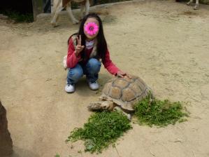 渋川動物公園38