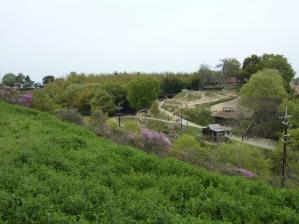 渋川動物公園26