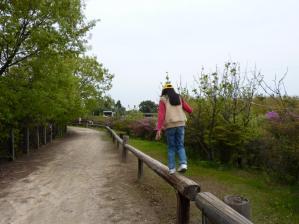 渋川動物公園28