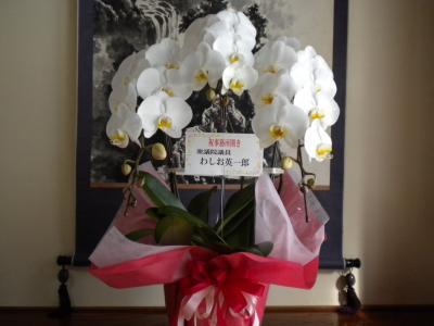 鷲尾英一郎氏からお花