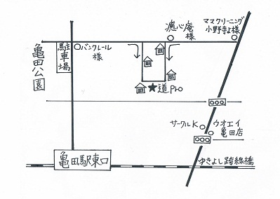 道pro地図