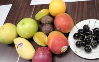 1フルーツ