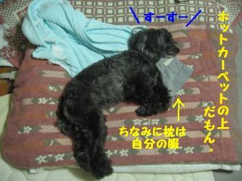 003_20091219213029.jpg