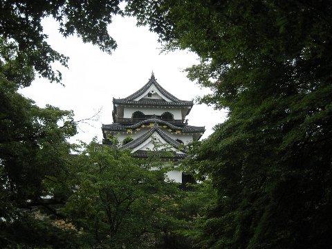 hikone 077