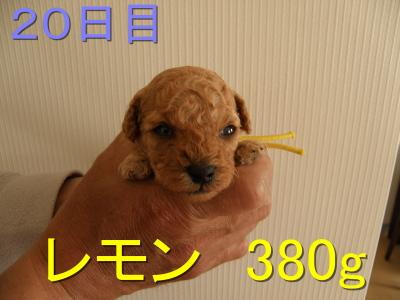 P5030018.jpg