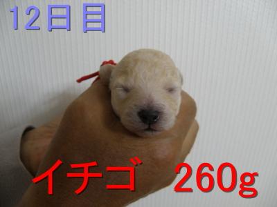 P5030030.jpg