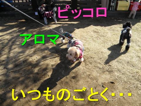 PC050076.jpg