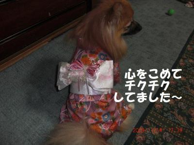 028+-+繧ウ繝斐・_convert_20091118095453