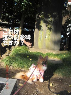 043+-+繧ウ繝斐・繧ウ繝。繝ウ繝・convert_20091119093703