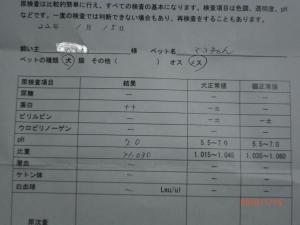 032-繧ウ繝。繝ウ繝・convert_20100118221853