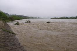 新潟県 荒川 5月