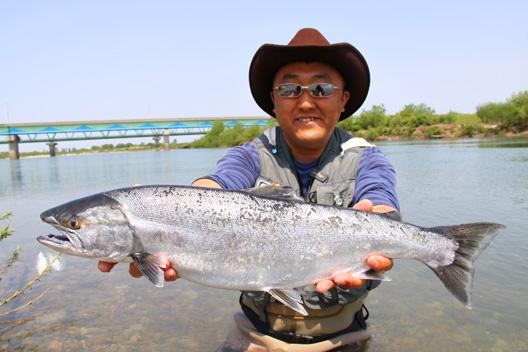 2011荒川サクラマス釣り