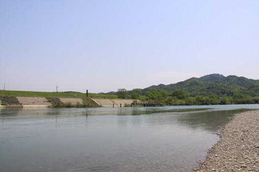 2011荒川サクラマス釣り 若大将