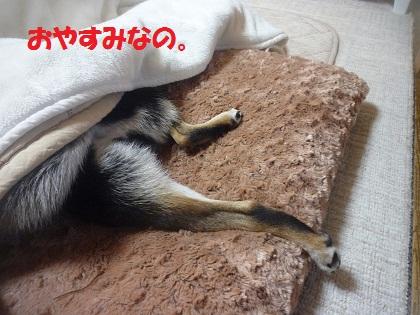 0107おやすみ