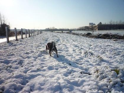 0202雪景色