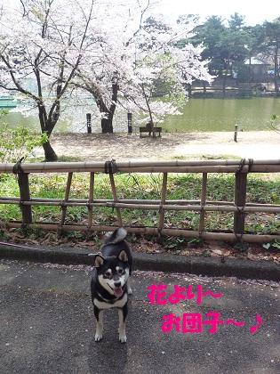 0411花より団子~
