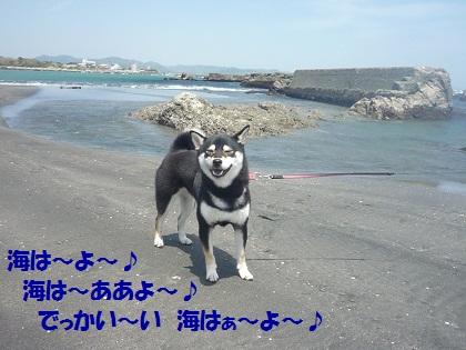 0430海はよ~