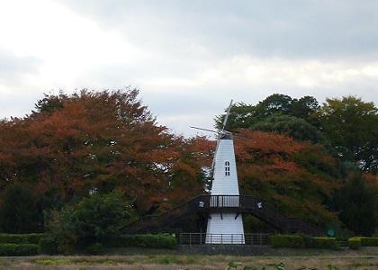 1111風車の公園