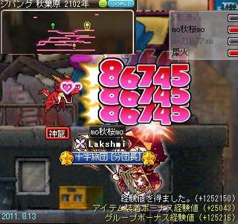 パラ秋桜 秋ナス 2011.8.13