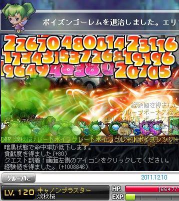 キャノン淡秋桜 120Lv 2011.12.10