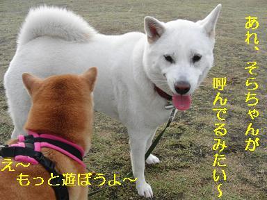あ、ユキちゃん行っちゃうの~?