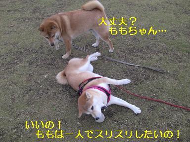 ありがと!けんちゃん!