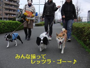 仲良く歩きましょう♪
