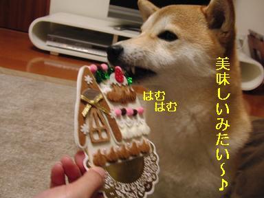 食べちゃダメ~!
