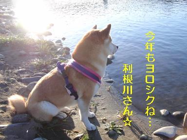 利根川さーんお願いします☆