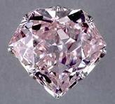hortensiadiamond2.jpg