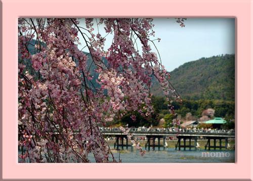 額嵐山渡月橋DSCF1452