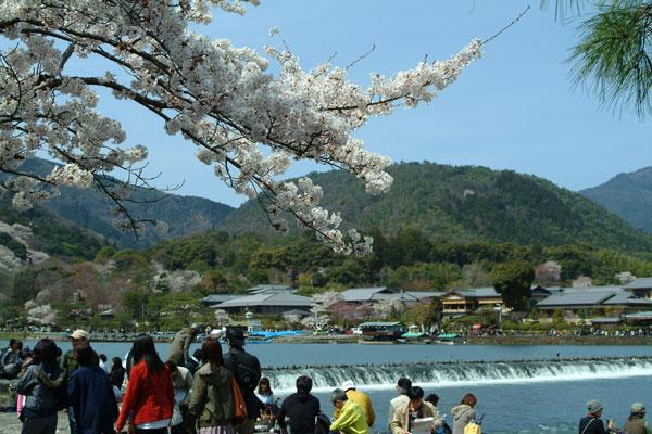 嵐山DSCF1480