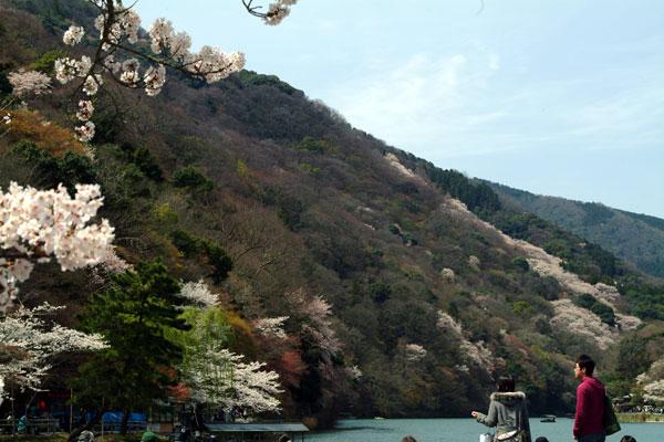 嵐山DSCF1475