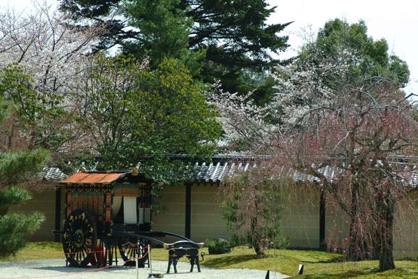 大覚寺DSCF1496