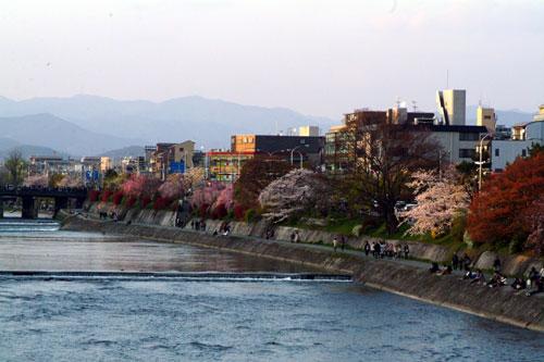 加茂川DSCF1660