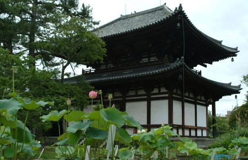 kikouji9