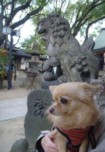 モンと神社