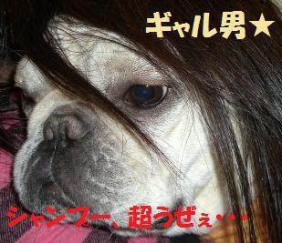 CIMG1176 ギャル男