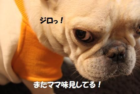 IMG_4121 りか2