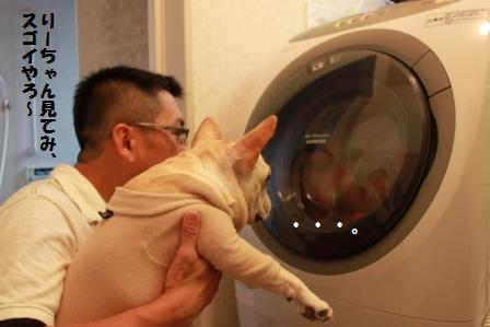 洗濯機とふたり