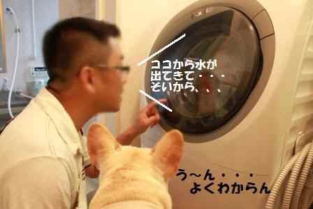 2洗濯機とふたり
