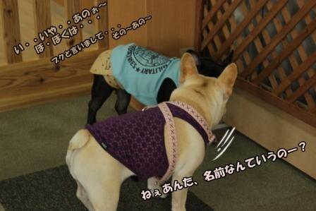 IMG_9610ぶく