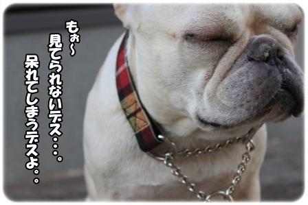 IMG_4490.jpg
