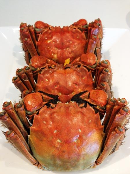 上海蟹~☆