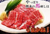 img_basashi-g_eye.jpg