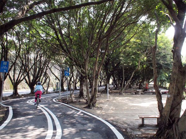 cyclingroad.jpg