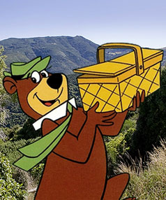 Yogi Bear movie begins filming in NZ