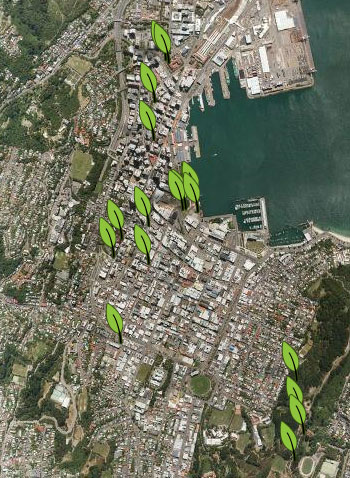 Project Noah - spottings in Wellington