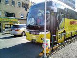 ハトのバス